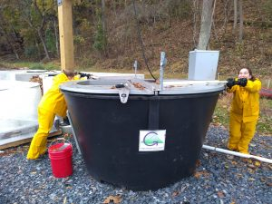 students turn earth tub compost digesters