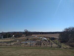 LaFarm Community Gardens 2020